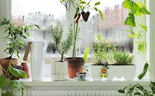 jardinería ikea 2015