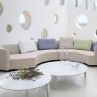 roche bobois sofas curvado