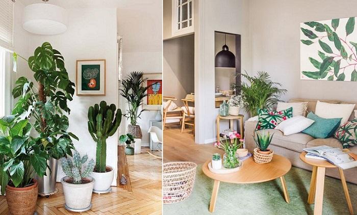 decoracion de salones modernos plantas